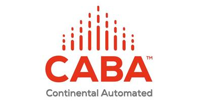 Website design for CABA
